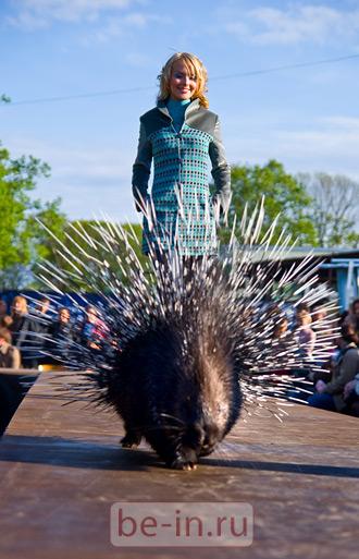 Дефиле в Ленинградском Зоопарке. Санкт-Петербург. Май 2009