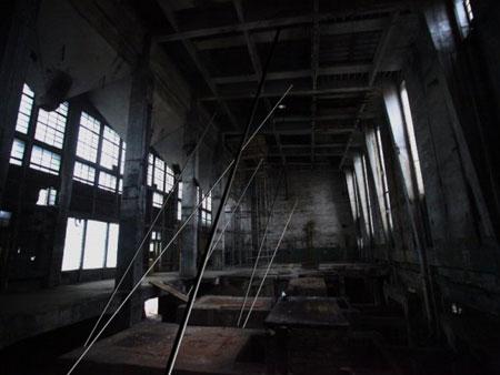 Лучшие выставки конца декабря 2009 г. в Москве и Петербурге