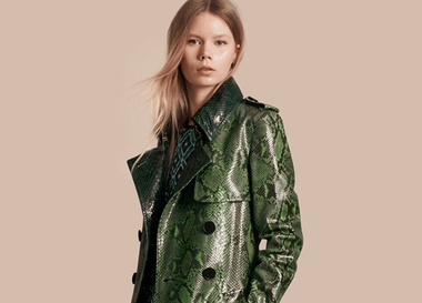 Lookbook: Burberry Women. Осень/Зима 2016-2017